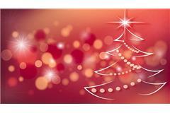 Chiusura per Festività natalizie dal 23.12.16 al 06.01.2017
