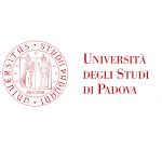 Università degli Studi di Padova – ricerca ingegnere progettista elettrotecnico